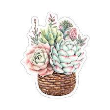 Watercolor Succulent Sticker Planter Basket Plant Cactus Laptop Decal Starcove Fashion