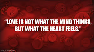 love quote what heart feels red hd widescreen r tic