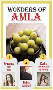 benefits of amla for hair growth