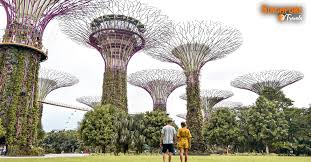 gardens by the bay archives singapore
