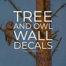 Tree Owl Wall Decals 5 Creative Designs To Choose From