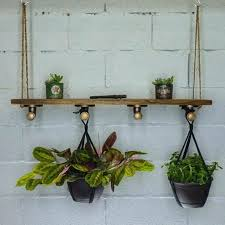 hanging wall planter indoor remit2 me
