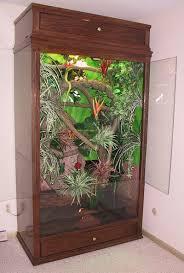 reptile cage emerald tree boa