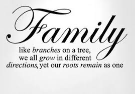 family quotes that you will feel blessed seeing quotes hunter