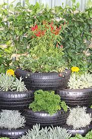 lawn garden garden exterior small