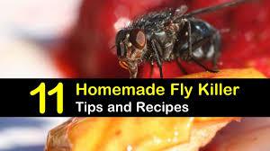 homemade fly recipes 11 natural
