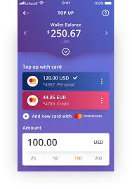 ᐉ digital wallet or pre paid ewallet