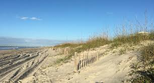 The Effect Of Sand Fencing On The Structure Of Natural Dune Systems Nccos Coastal Science Website