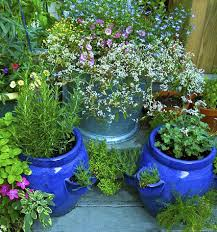 tips for beautiful large container gardens