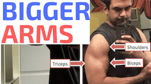 how to get bigger arms biceps triceps