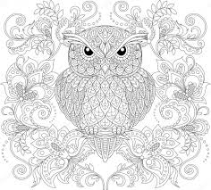 Owl And Floral Ornament Adult Antistress Coloring Page Stock