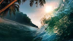 5k 4k wallpaper 8k ocean palms sun