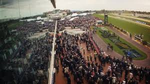2014 Crown Golden Ale Caulfield Cup Day ...
