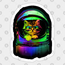 Cool Kitten On The Helmet Cat Sticker Teepublic Au