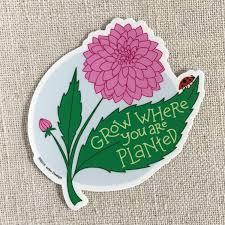 Grow Where You Are Planted Vinyl Sticker Acbc Design