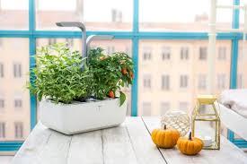 14 indoor smart garden ideas you will
