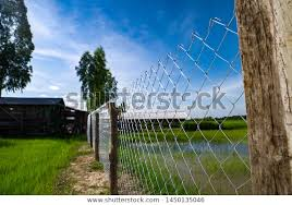 Surrounding Fence Weave Wire Mesh Agricultural Parks Outdoor Stock Image 1450135046