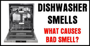 bad smell in my dishwasher