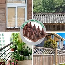 Sparrow Cat Bird Defender Fence Window Expelling Burglar Wall Bird Repeller Wall Spikes Anti Climb Animal Repellent Lazada Ph