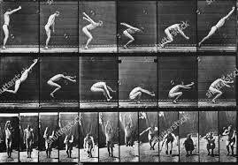 Eadweard Muybridge 1887 Editorial Stock Photo - Stock Image | Shutterstock