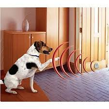 Petf01 Pets Manager Digital Invisible Behaviors Indoor Fencing Device Continue To The Product At The Image Link Indoor Dog Fence Indoor Dog Dog Barrier