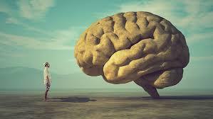 Risultato immagini per psicologia