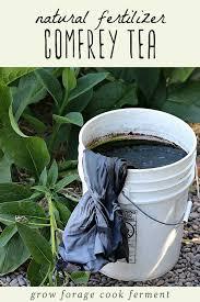 frey tea homemade natural fertilizer