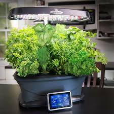 6 best hydroponic systems of 2020 grow