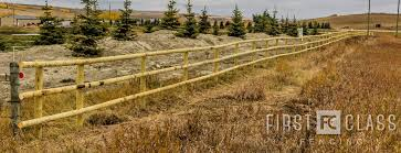4 Best Fencing Options For Horses First Class Fencing