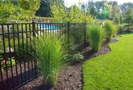 Residential Aluminum Fence 5 Jpg 434 295 Modern Design In 2020 Fence Landscaping Landscaping Around Pool Inground Pool Landscaping