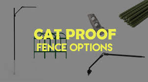 Cat Proof Fence Guide Different Options Effectiveness Ideas Purrfect Fence