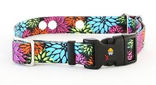 Invisible Fence Collar Compatible Heavy Duty Replacement Strap With The Rugged Lock Easy Release Clip Flower Days Medium Up To 18 Neck Also Compatible With Other Brands Of Fence Collar Toyboxtech
