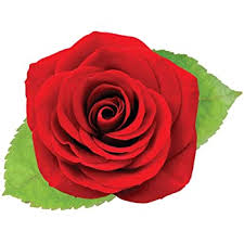 Amazon Com Stikart Removable Single Red Rose Wall Decal On Canvas Home Kitchen
