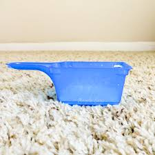 the best diy carpet cleaning solutions
