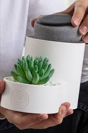 Echo Dot Planter Holder In 2020 Best Amazon Products Echo Dot Kids Room Design