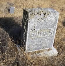 Alba Sylvester Burns (1873-1916) - Find A Grave Memorial