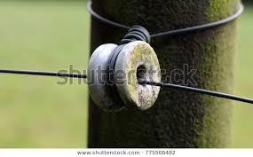 Ceramic Insulator Electric Fence Stock Photo Edit Now 775508482