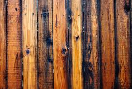 1 755 Cedar Fence Photos Free Royalty Free Stock Photos From Dreamstime