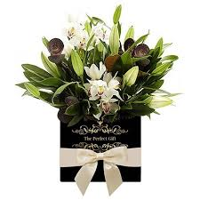 charming orchid flowers free delivery