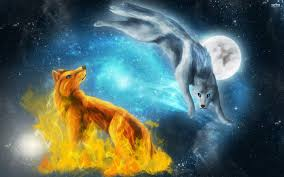cool wolf wallpapers 23 fun chap