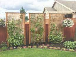 37 Best Outdoor Privacy Screen Ideas And Images Privacy Fence Landscaping Privacy Landscaping In 2020 Privacy Fence Landscaping Backyard Fences Privacy Landscaping