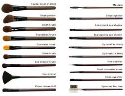 diffe types of makeup brush and their