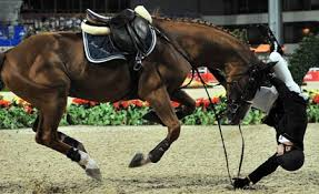 Falling from horse during equestrian events - Sports News - SINA English