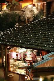 sweet hut picture of kalahari resorts