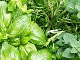 35 Herb Garden Ideas