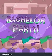 Handwriting Text Writing Bachelor Party Concept Stock Illustration 1378864373