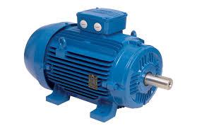 WEG W21 Electric Motor | ETA