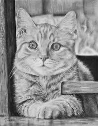 Afbeelding Van Leeuw Door Nicolette Boers Roeland Katten