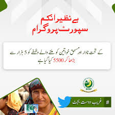 """PTI on Twitter: """"Social safety nets like Benazir Income Support ..."""