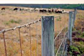 Getting Started With Livestock Part 2 Fencing Facilities Homestead On The Range